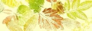 papeles pintados en Valencia - hojas